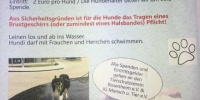 Hundebadetag in der Therme am Freibad in Bad Aibling