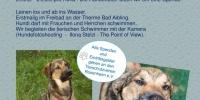 Hundebadetag im Freibad an der Therme Bad Aibling!